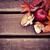 automne · frontière · élément · laisse · cinquième · feuille · d'érable - photo stock © dashapetrenko