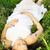 красивой · беременная · женщина · расслабляющая · парка · йога · трава - Сток-фото © dashapetrenko