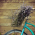 vintage bycicle with basket with lavender stock photo © dashapetrenko