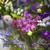 colorido · flores · mercado · negócio · natureza - foto stock © dashapetrenko