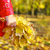 女の子 · 秋 · カラフル · 公園 - ストックフォト © dashapetrenko