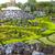 熱帯 · 植物園 · 細部 · タイ · 花 · 春 - ストックフォト © dashapetrenko