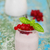 prato · vermelho · groselha · tabela · folha · jardim - foto stock © dashapetrenko