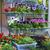 kleurrijk · bloemen · markt · business · natuur - stockfoto © dashapetrenko