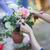 mutlu · kadın · çiçek · gözlük · moda - stok fotoğraf © dashapetrenko