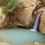 oase · woestijn · Tunesië · zomer · afrika · tropische - stockfoto © dashapetrenko