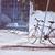 vintage bicycle in the street of tunis stock photo © dashapetrenko