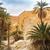 vista · montana · oasis · sáhara · desierto · Túnez - foto stock © dashapetrenko