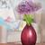 completo · flor · flores · jardim · beleza · bola - foto stock © dashapetrenko