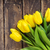 dahlia · bastaard · bloem · mooie · Rood · Geel - stockfoto © dashapetrenko
