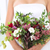 ongebruikelijk · sappig · bloemen · hop · retro - stockfoto © dashapetrenko
