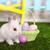 little white rabbit and easter eggs in green grass stock photo © dashapetrenko