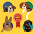 set of different dog breeds stock photo © dashikka