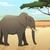 слон · жизни · Африка · лет · оранжевый - Сток-фото © dashikka