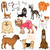 vector set of funny cartoon dogsvector illustration stock photo © dashikka