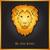 büszkeség · oroszlán · törzsi · tetoválás · illusztráció · természet - stock fotó © dashikka