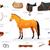 ingesteld · uitrusting · paard · zadel · bescherming - stockfoto © Dashikka
