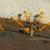 アリ · ミツバチ · ホーム · グループ · アフリカ - ストックフォト © davemontreuil