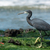 permanent · algues · plage · eau · alimentaire · mer - photo stock © davemontreuil