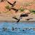 repülés · Saskatchewan · Kanada · kék · ég · természet · tó - stock fotó © davemontreuil