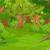 森林 · 林間の空き地 · 漫画 · eps · 10 · 春 - ストックフォト © dazdraperma