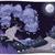 gyümölcsfa · tájkép · gradiens · háló · természet · terv - stock fotó © ddraw