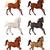 szett · különböző · vektor · izolált · rajz · lovak - stock fotó © ddraw