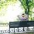 üzletember · ül · pad · hátulnézet · portré · park - stock fotó © deandrobot
