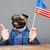 ABD · amerikan · köpek · işaret · büyük · parmak - stok fotoğraf © deandrobot