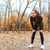 mulher · jovem · corredor · corrida · outono · parque · imagem - foto stock © deandrobot