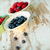 mix of blueberries strawberries and currant in vintage plates stock photo © deandrobot
