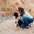 psa · plaży · gry · niebo · wody - zdjęcia stock © deandrobot