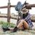 bella · riposo · ranch · recinzione · Hat - foto d'archivio © deandrobot