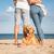 脚 · 立って · ビーチ · 背面図 · 太陽 - ストックフォト © deandrobot