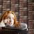 печально · довольно · девушки · говорить · телефон · домой - Сток-фото © deandrobot