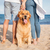 dog sitting near young couple on beach stock photo © deandrobot