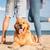 pernas · em · pé · praia · ver · de · volta · sol - foto stock © deandrobot
