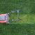 trawy · trawnik · zielone · charakter · krajobraz · ogród - zdjęcia stock © dedmorozz