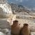 tesouraria · Grécia · tesouro · edifício · montanha · viajar - foto stock © denisgo