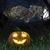 gufo · albero · notte · luna · cielo · nubi - foto d'archivio © denisgo