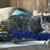 静物 · 猫 · 花 · ロシア · 青 · 肖像 - ストックフォト © denisgo