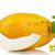 melancia · fruto · folha · isolado · branco · comida - foto stock © denisnata