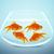 pequeno · tigela · sair · porta · negócio · vidro - foto stock © designsstock