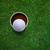 golfe · bola · copo · bonito · negócio · verde - foto stock © designsstock