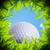мяч · для · гольфа · дыра · травой · поле · зеленая · трава · области · трава - Сток-фото © designsstock
