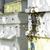 bijen · vliegen · bijenkorf · zon · licht · gras - stockfoto © deyangeorgiev
