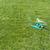 芝生 · スプリンクラー · 水 · 緑の草 · 夏 · 春 - ストックフォト © deyangeorgiev