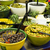 recheado · verde · azeitonas · comida - foto stock © deyangeorgiev
