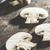 Mushrooms on wooden table stock photo © deyangeorgiev