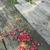 ciotola · legno · natura · sfondo · tavola - foto d'archivio © deyangeorgiev
